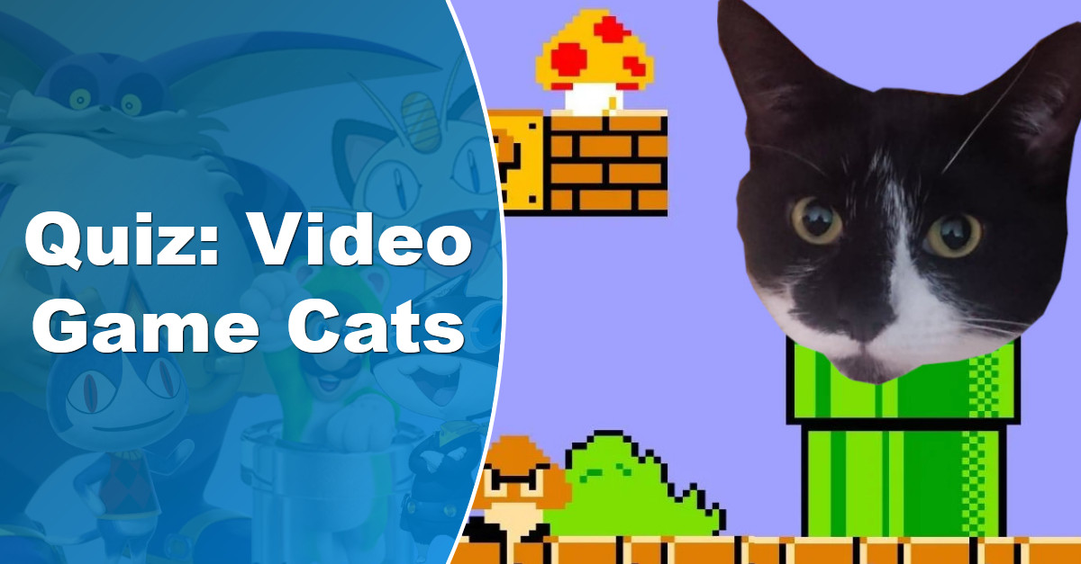 How many video game cats can you name  Quiz